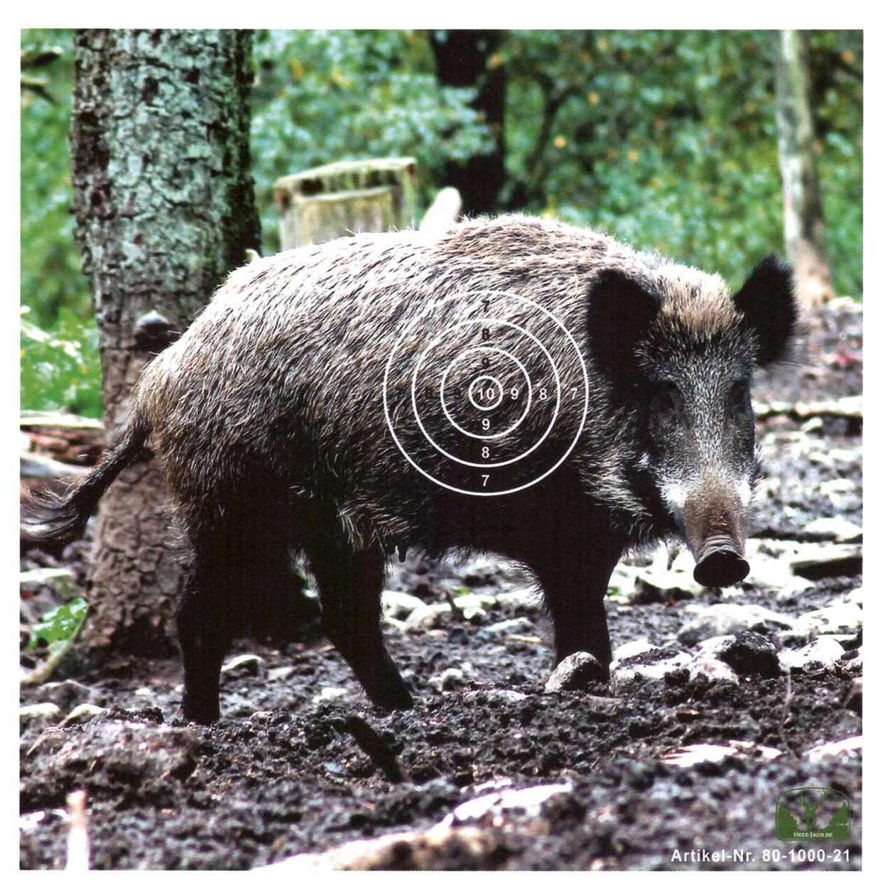 Luftgewehr-Zielscheibe-Target-Wildschwein-Hege-Jagd